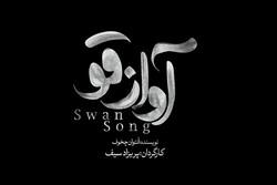 تماشاخانه ایرانشهر میزبان «آواز قو» میشود