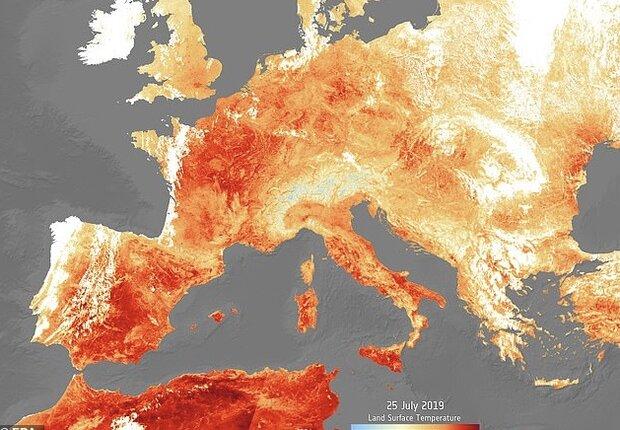 موج گرما در یک هفته ۴۰۰ قربانی هلندی گرفت