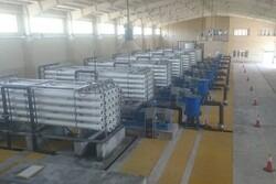 ظرفیتهای آبشیرینکنهای استان بوشهر به ۱۵۰ هزار متر مکعب میرسد