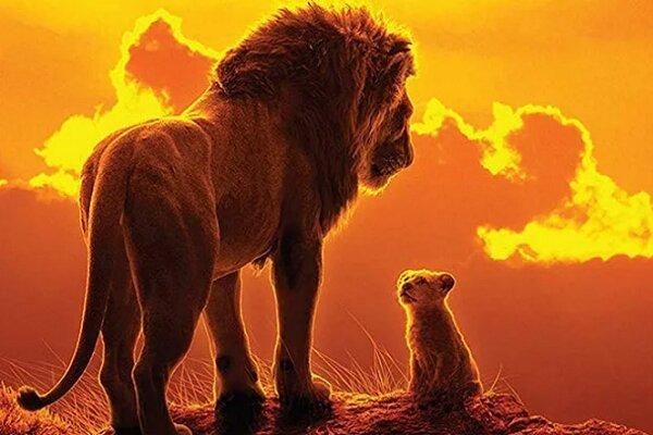 «شیرشاه» پرفروشترین انیمیشن تاریخ شد/ ادامه رکوردزنیهای دیزنی