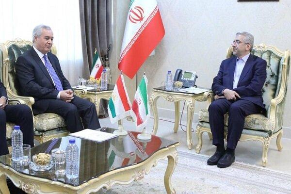 موانع توسعه همکاریهای ایران و تاجیکستان باید رفع شود