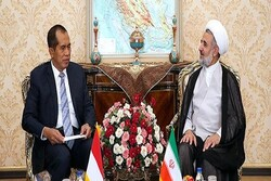 Iran ready to expand military coop. with Indonesia: Zonnour