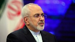 Zarif meets Finnish foreign trade minister