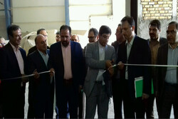 طرح توسعه یک شرکت تولید مواد غذایی در قزوین افتتاح شد