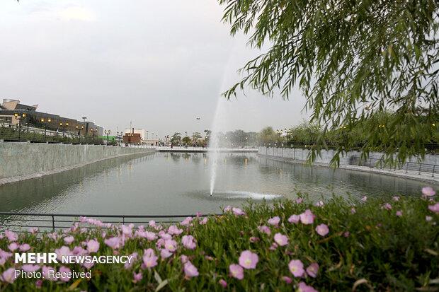 sanat gölü