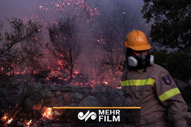 VIDEO: Wildfire on Greek island of Evia