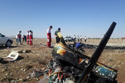 مجید فتحی نژاد خلبان هواپیمای فوق سبک سانحه دیده امروز بود