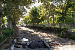 مرمت و احیای سه ملک قدیمی در پهنه رودکی آغاز شد