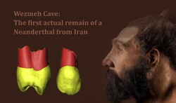 Iran among countries with Neanderthal discoveries