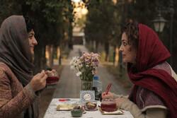 تبریک انجمن صنفی کارگردانان سینمای مستند به «در جستجوی فریده»