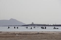 Lake Urmia water level rises by 71cm