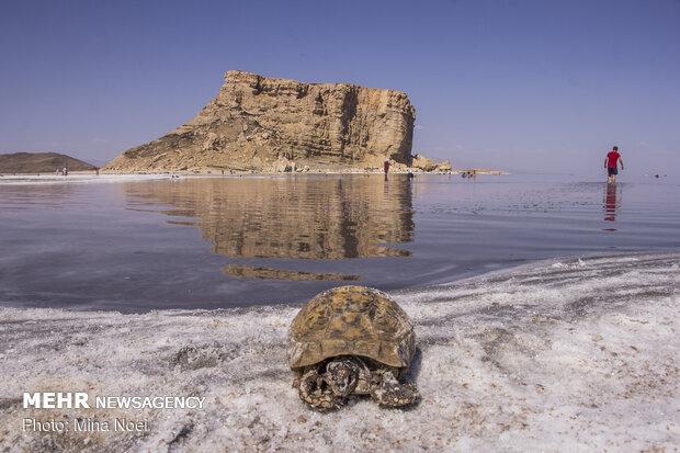 تراز دریاچه ارومیه یک متر افزایش یافت/ افزایش حجم آب موجود دریاچه
