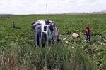 Türkiye'de minibüs ile tır çarpıştı: 7 ölü, 8 yaralı