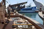 نخستین فیلم از توقیف کشتیهای حامل ماهیهای قاچاق توسط سپاه