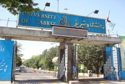Iran's Tabriz uni., 6 Turkish unis. to expand scientific coop.