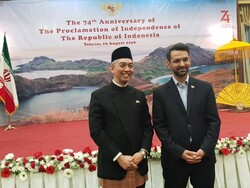 ICT min. appreciates Indonesia for achievements in coop. with Iran