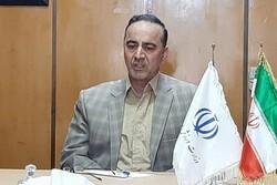 ایران میزبان مسابقات کونگ فو قهرمانی جهان