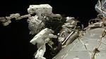 ایستگاه فضایی بین المللی ، فضانورد ناسا