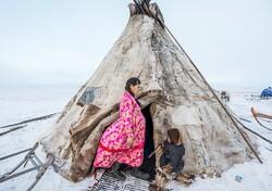 Kuzey Kutup bölgesinde yaşam!