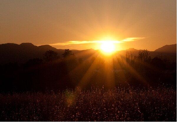 سورج کی تپش سے کورونا وائرس کے خاتمہ کے بارے میں متضاد نظریات