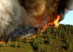 مهار آتشسوزی مراتع قرهتیکانلو خداآفرین در جنگل های ارسباران