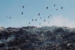وضعیت نامناسب دپو زباله در ملایر
