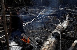 برزیل: آمریکا هیچ کمکی برای مهار آتشسوزی در آمازون نکرده است