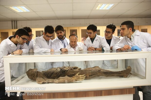 Aug. 23 marks National Doctors' Day in Iran