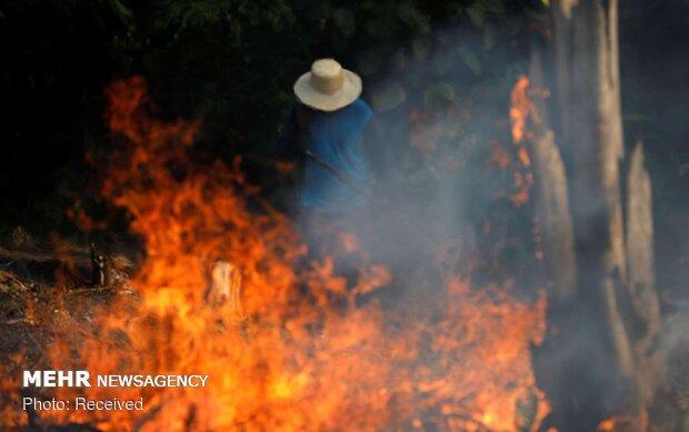 ایمیزون کے جنگلات میں سیکڑوں مقامات پر آگ بھڑک اٹھی