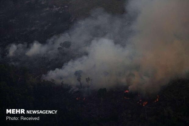 آتش سوزی جنگل های آمازون