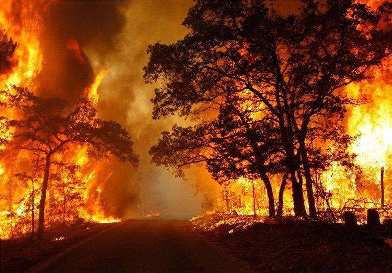 آتش سوزی جنگلهای ارسباران در محدوده شهرستان کلیبر