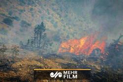 آتش جنگلهای ارسباران مهار شد
