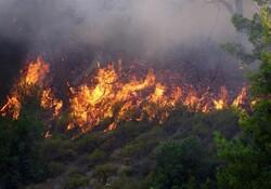 Wildfire haunting Arasbaran forest extinguished
