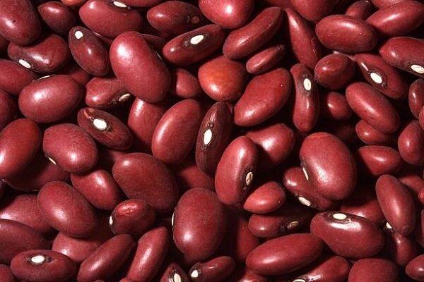 گمرک ایران: ترخیص محمولههای لوبیا قرمز ممنوع است