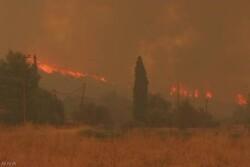 پنج هتل در جزیره ساموس یونان به علت آتش سوزی تخلیه شد