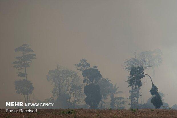 Brazil sends army to tackle blazes