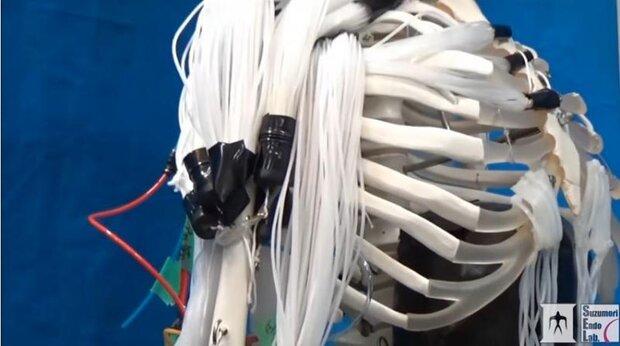 اسکلت رباتیک با ماهیچه های متحرک