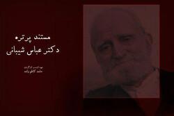 زندگی عباس شیبانی مستند شد/ مردی که ۱۲ سال زندانی بود