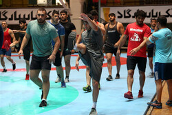 Iran announces freestyle team for 2019 World Wrestling C'ships