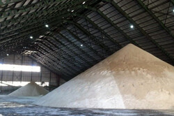 ۱۵ تن شکر احتکاری در آذربایجانشرقی کشف شد
