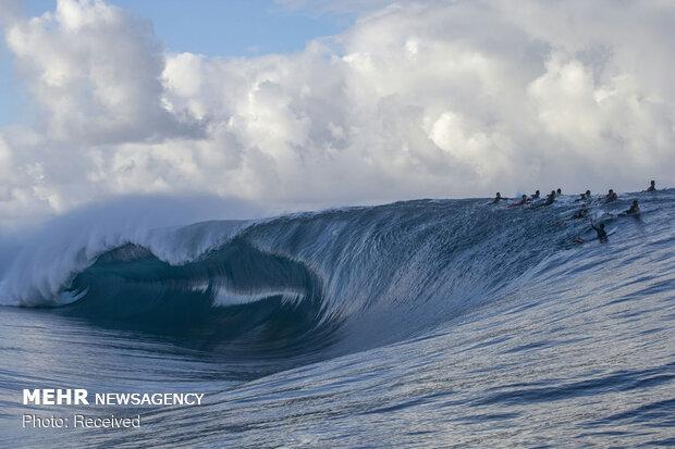 Dünya Sörf Ligi
