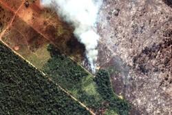 انتقاد برزیل از «دیدگاه تحریف شده» جامعه جهانی در قبال محیط زیست