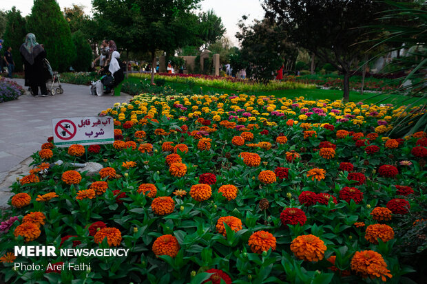 7th Flower and Plant Exhibition of Karaj