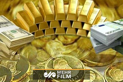 انهدام باند قاچاق طلا و ارز در آذربایجان غربی