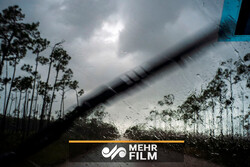 VIDEO: Violent Hurricane Dorian hits Bahamas