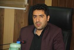 ۶ نقطه برای ایجاد شهرکهای گلخانهای در استان بوشهر انتخاب شد