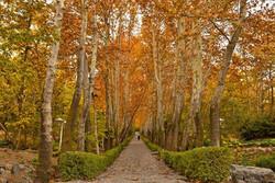 تهرانگردی در فصل زیبای پاییز