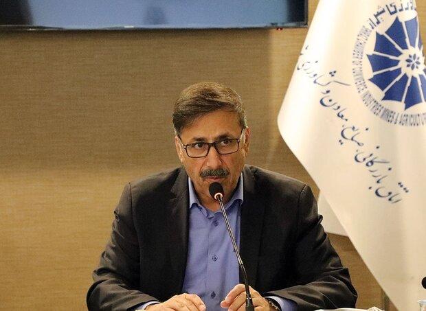 منطقه ویژه نفت و گاز استان فارس عملیاتی می شود