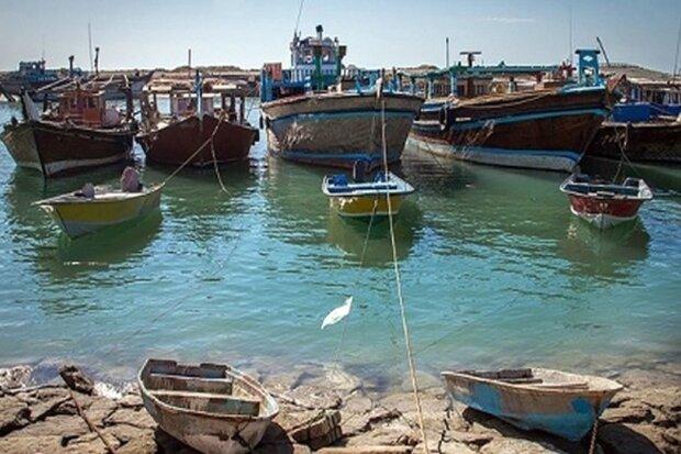 مهلت صید میگو در استان بوشهر پایان یافت