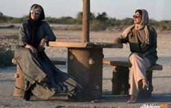 فیلمهای اجتماعی در میان پرفروشهای سینمای ایران